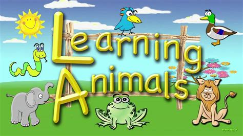 for toddlers learning animals an educational for