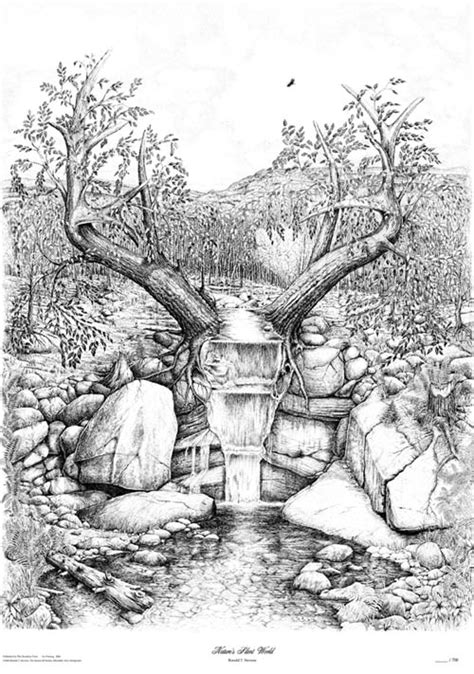 pen amp ink drawing by ron stevens the stonewall studio of
