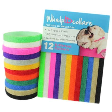 puppy whelping collars details about 12 whelping puppy kitten id velcro collars bands soft
