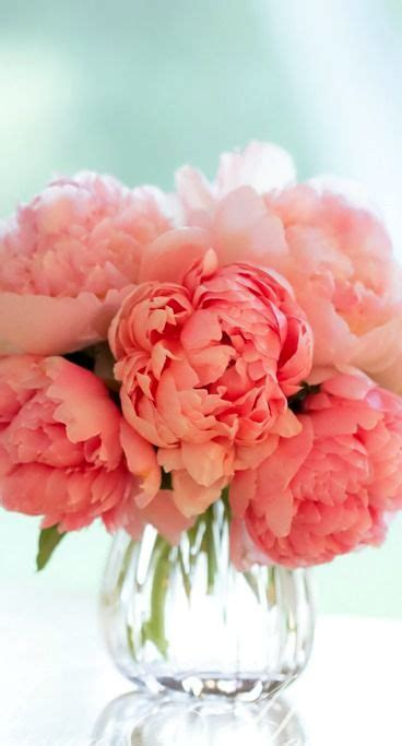 peonies and orange blossoms designing 1552 best images about coral and orange weddings on coral wedding cakes