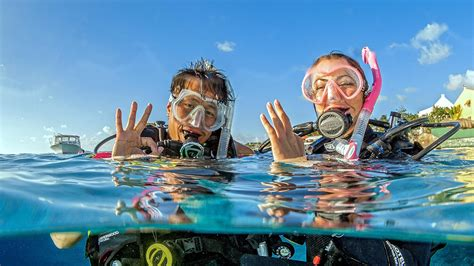 dive certifications education scuba diving and certifications padi