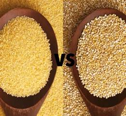 which is healthier quinoa or couscous healthy food guide
