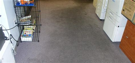 Pro Clean Carpet Cleaning Floor Services by Pro Clean Carpet Cleaning Floor Services Carpet Vidalondon