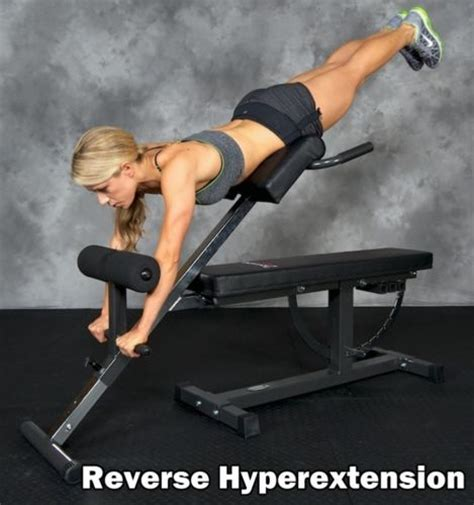 homemade hyperextension bench diy hyperextension bench 184 best images about exercise