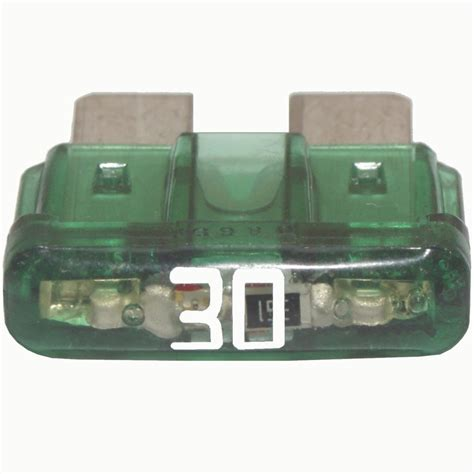 Fuse L by Fuse 30 Green Led 5 Pack Steinair Inc