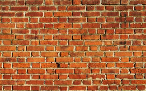wall with wall clipart brick wallpaper pencil and in color wall