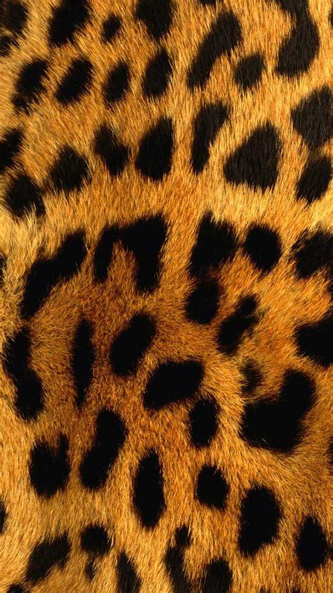 imagenes uñas animal print fondos para whatsapp de animal print im 225 genes wallpappers