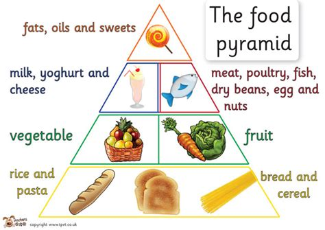 carbohydrates ks2 zoom may 2014