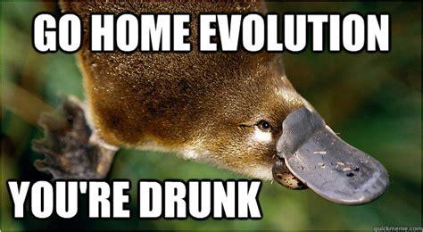 Platypus Meme - go home evolution you re drunk platypus quickmeme