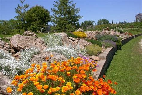 piante giardino roccioso giardini rocciosi ottobre mese per mettere a dimora nuove