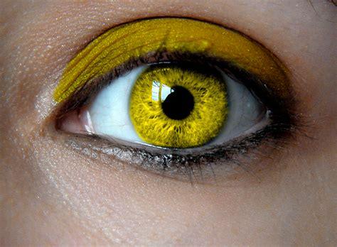 yellow eye color birthstone eye yellow topaz by padfoot7411 on deviantart