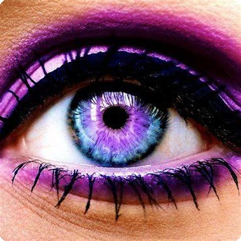 cool colored contacts the 25 best purple contacts ideas on real