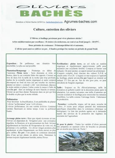 Entretien Des Oliviers by Notre Livre