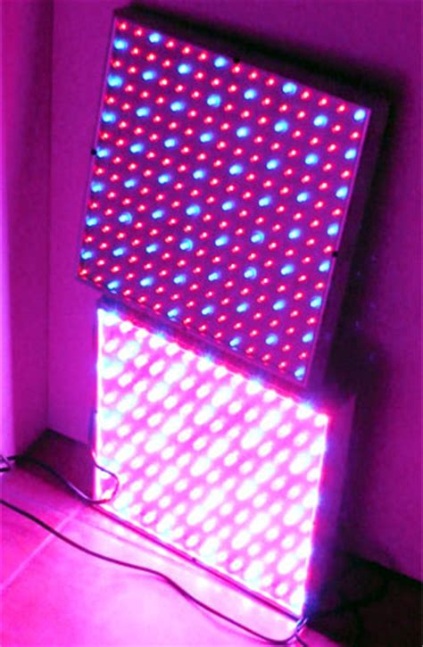 beleuchtung pflanzen led led panel pflanzenbeleuchtung lichthaus halle 246 ffnungszeiten