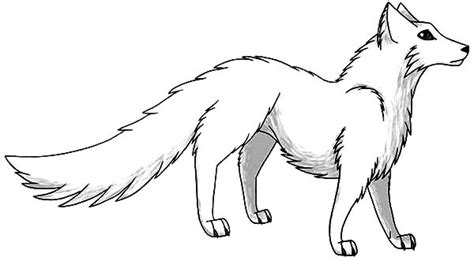 coloring page arctic fox manga draw of artic fox coloring pages manga draw of