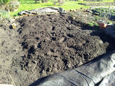 manure notes from the allotment
