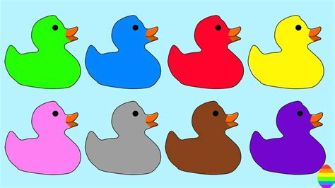 what color are ducks learn colors with ducks coloring pages for and