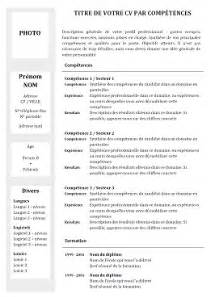 Curriculum Vitae In Word by Mod 232 Le De Cv Par Comp 233 Tences N 186 1 Gris Exemples De Cv
