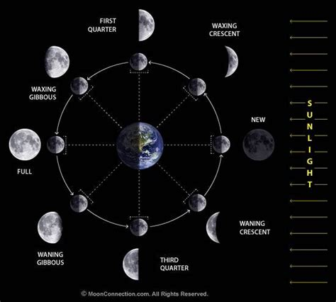 lunar phases diagram moon phase chart