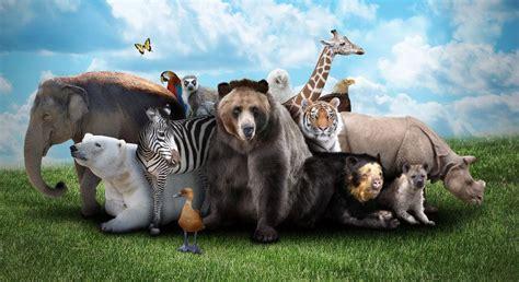 imagenes animales feroces vocabulario de los animales salvajes profedeele