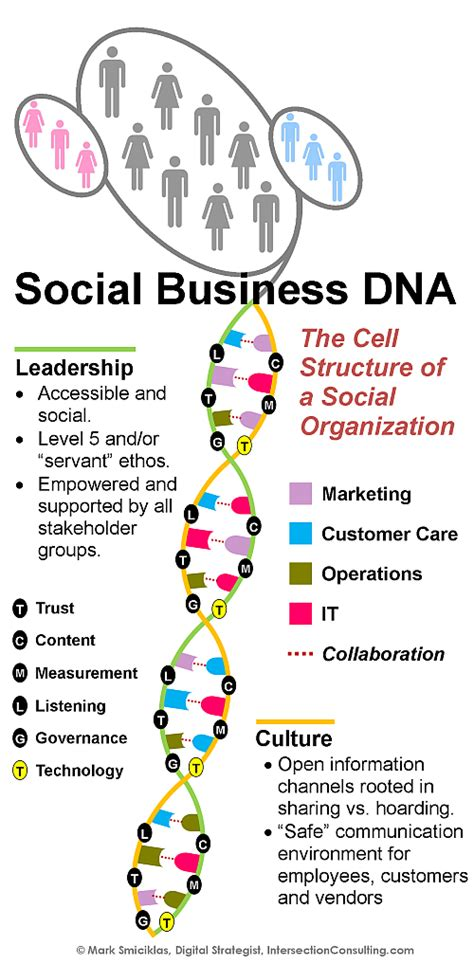 Dna 0 Resumen by El Adn De Las Social Business Infograf 237 A Marketing Directo