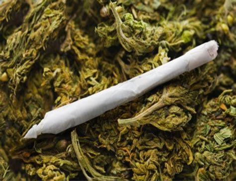 imagenes de weed reales los efectos en el cerebro del consumo prolongado de marihuana