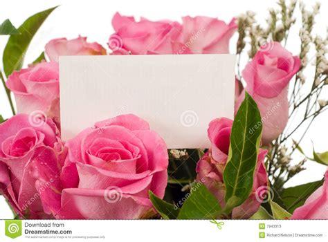 rosas para escribir rosas y tarjeta del mensaje imagen de archivo imagen