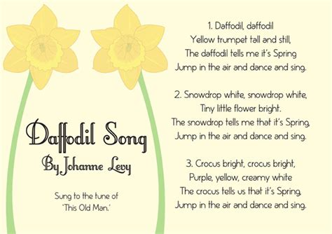 illustrated daffodil song sheet st david s day resource