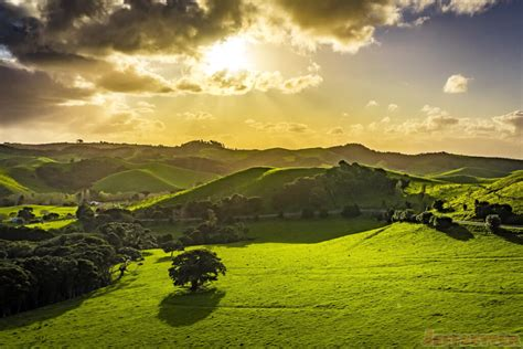 Landscape Pictures New Zealand Beautiful Landscape Photos In Waiheke Island New Zealand