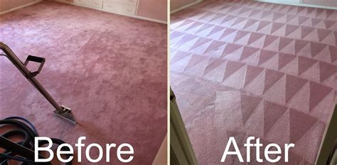 Chicago Rug Cleaners Rugs Ideas Area Rug Cleaning Chicago