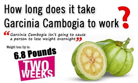 How Does A Detox Take To Lose Weight by How To Lose Weight Drastically In A Month How To