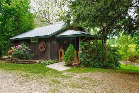 Cricket Cabins the cricket cabin mountain springs cabins