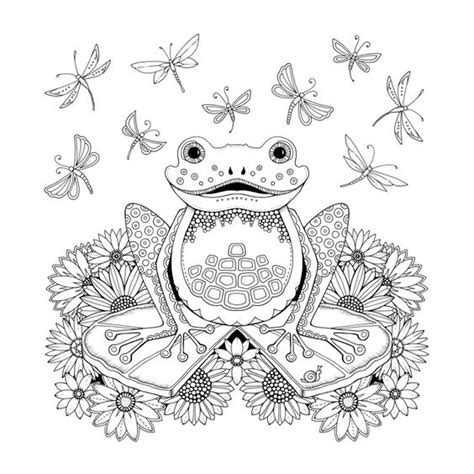 coloring books jumbo coloring book of enchanted gardens landscapes animals mandalas and much more for stress relief and relaxation books frog artist johanna basford enchanted forest coloring