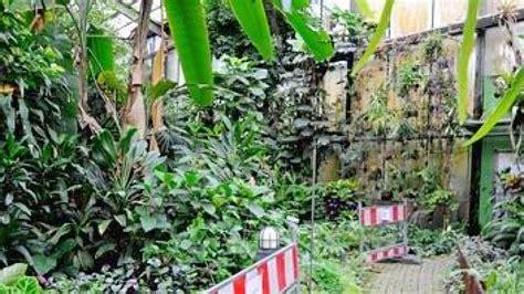 Botanischer Garten Duisburg Hamborn by Tropenhaus Abriss Der Gew 228 Chsh 228 User Im Botanischen Garten Hamborn So Gut Wie Beschlossen