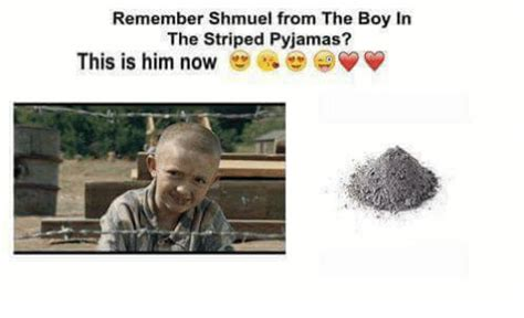 boy in the striped pajamas book report remember shmuel from the boy in the striped pyjamas 9gag