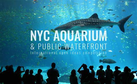 aquarium design new york open design competition nyc aquarium public waterfront