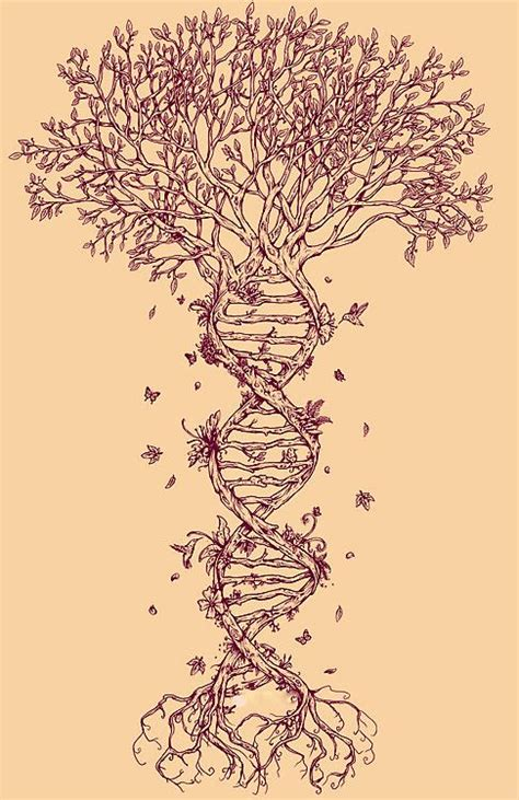 dna tree tattoo 61 best images about tattoos on trees gun