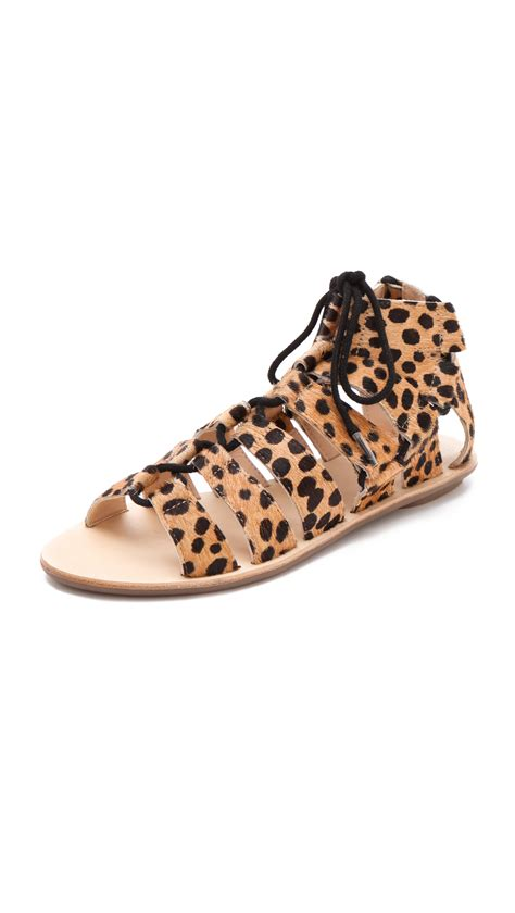 loeffler randall sandals loeffler randall gladiator haircalf sandals in animal
