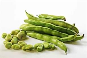 fava bean dip with goat cheese and garlic recipe simplyrecipes com