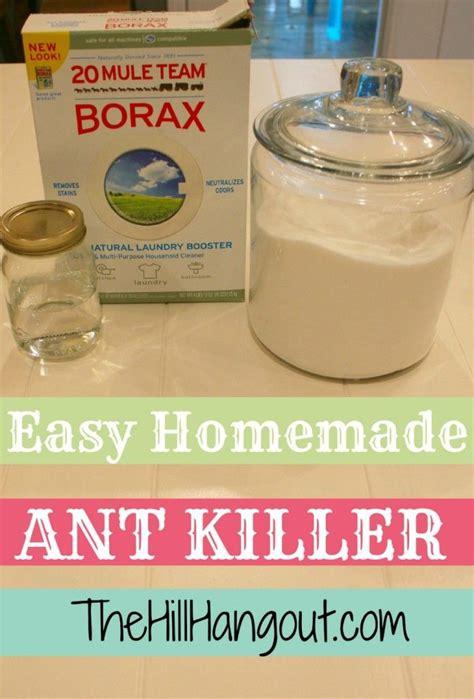 best 25 ant killer ideas on ant