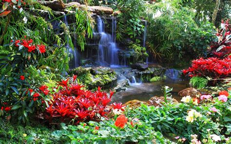 Gardening Plants And Flowers Waterfall Hd Wallpaper And Background Image 1920x1200 Id 313081