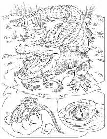 kids fun 9 coloring pages crocodiles