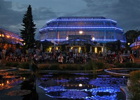giardino botanico berlino arriva la botanische nacht una notte nell incanto
