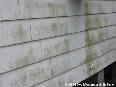 remove mold from siding of house two men and a little farm oh oh mildew on siding