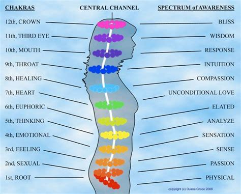 Symptoms Of Detox Throat Chakra by 50 Best Images About Other Chakras On Nirvana