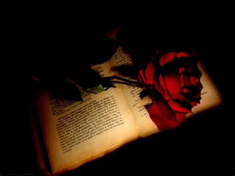 libro a gothic fantasy wall sant jordi llibre i rosa zaquizam 205