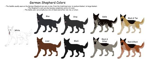 german shepherd colors german shepherd colors by black tiger of evil on deviantart