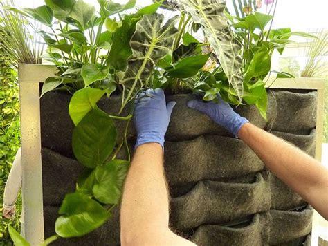 vasi per piante aromatiche contenitori indoor per piante aromatiche vasi vasi