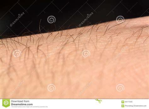 background human skin macro stock photo 172610195 skin with hair in macro stock photo image 63177340