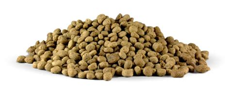 best kibble for dogs petbrosia best food formulated for felix pink